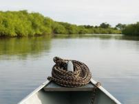 kanoter
