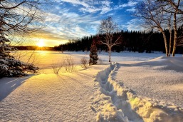 winter-landscape-636634_960_720